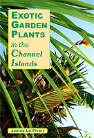 Exotic Garden Plants In The Channel Islands